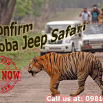 Confirm Tadoba Jeep Safari Booking, Tadoba Jeep Safari; Tadoba-Andhari Tiger Reserve